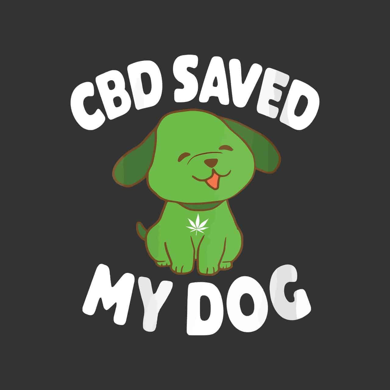A CBD kutyáknak megmentette a kutyám életét!